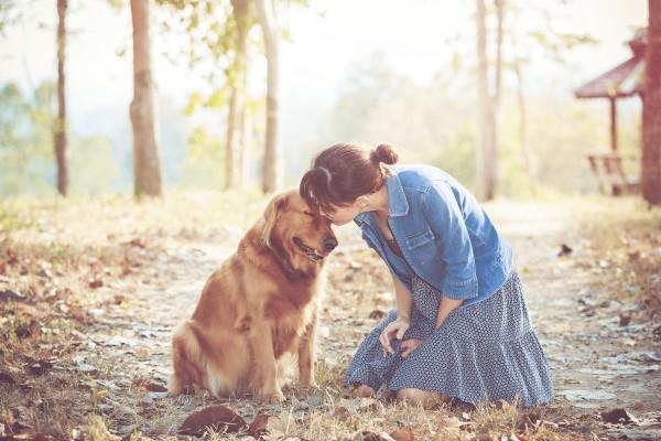意外に当たる!?動物で占うあなたの性格や個性、動物関連診断