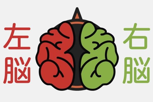 知って納得!利き脳チェック 〜 あなたは右脳派?左脳派?