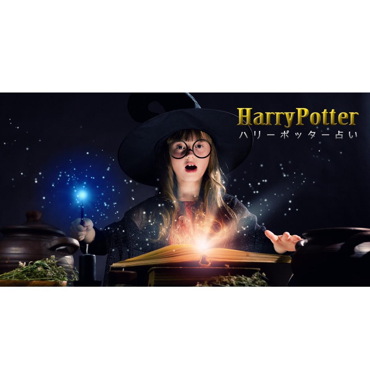 ホグワーツ魔法魔術学校の画像 p1_21