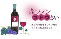 赤ワイン・ブドウ占い<あなたの性格をワイン用のブドウにたとえたら?>