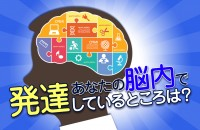 右脳は感覚の鋭さと創造力、左脳は論理的思考をつかさどります「あなたの脳内で発達しているところは?」