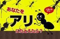 まさに人間社会の縮図のような、アリの世界。この中だったら、どんな役割?「あなたをアリにたとえたら?」