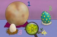 【画像性格占い】直感でサクッと診断「不思議な卵、育てるならどれ?」