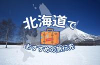 あなたのプランは?「北海道でおすすめの旅行先」