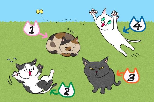 【画像性格診断】子猫をもらうなら、どの子にする?
