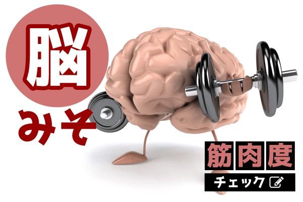 肉体派の人、集合!「脳みそ筋肉度チェック」