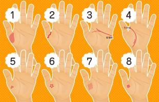 【手相占い】親指の周りの手相でわかる愛情の度合い