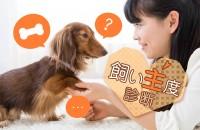 ペットと私の絆は、どれくらい?「飼い主度診断」