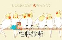 もしも、あなたが鳥だったら?「鳥になって性格診断」【鳥診断】