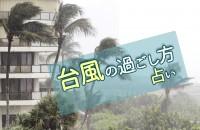 あなたにおすすめの「台風の過ごし方占い」