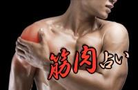 自分が筋肉になったら?上腕二頭筋、大胸筋、それともロナウドばりの、シックスパックの腹筋?「筋肉占い」
