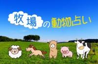 羊、アルパカ、フワフワでモコモコ、可愛い動物にふれあいたい♪あなたの個性はどんな?「牧場の動物占い」