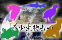 〝ヤンバルクイナ〟って、なんだか言ってみたくなる。他にも居ます、守るべき日本の貴重な「希少生物占い」