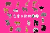 『恋愛×動物占い』あなたは恋をすると何タイプ?